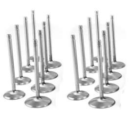CUSTOM VALVES (CHOOSE LENGTH, SIZE, AND ALLOY TYPE) STAINLESS, TITANIUM, INCONEL, HOLLOW STEM